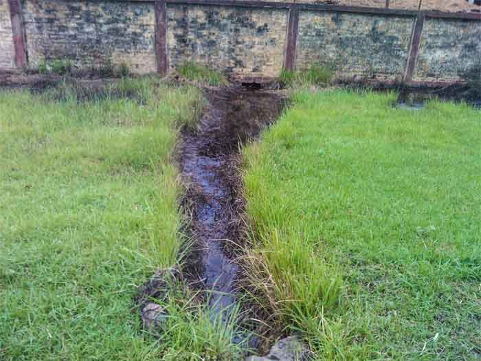yard-drainage-solutions
