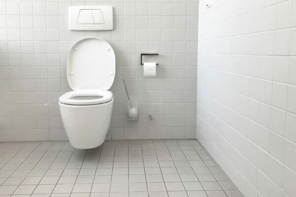Wooden vs Plastic Toilet Seat - amarcoplumbing.com